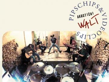 Pips Chips And Videoclips 'Akustični Walt'