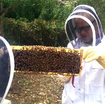 Flea sa svojim pčelama (Izvor: Instagram)