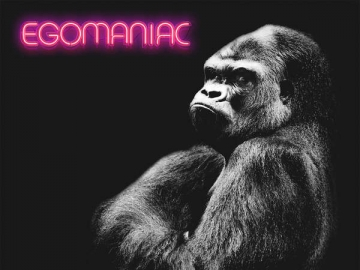 Kongos 'Egomaniac'
