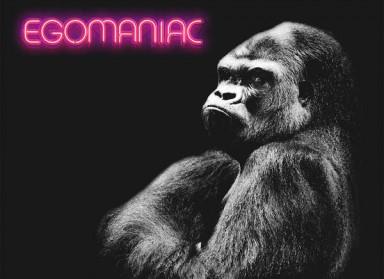 Kongos 'Egomaniac' – sklad zemljopisno-glazbenog kaosa