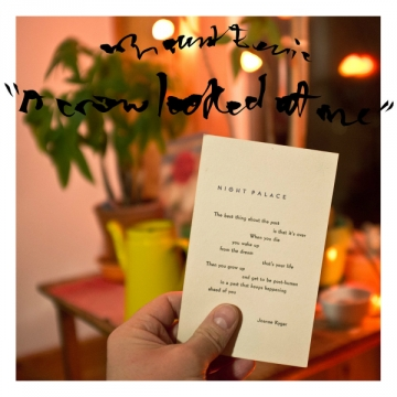 Mount Eerie 'A Crow Looked At Me'