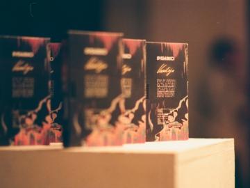 Predstavljanje albuma Vanilija u Galeriji Miroslav Kraljević (Foto: Denis Komljenović)