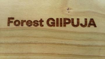 'Forest Giipuja' (Foto: Marin Aničić)