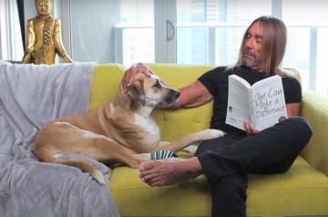 Iggy Pop na reklami za PETA-u