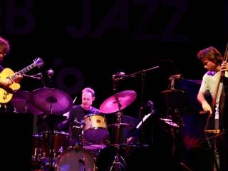 Pat Metheny Trio na 7. Vip Zagreb Jazz Festivalu (Foto: Walter Thompson)