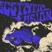 Američki psihodeličari Ecstatic Vision u Močvari