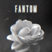 Fantom je objavio novi singl 'Cveće'