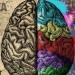 Analiza uma 'Kužiš, kopčaš, kapiraš ili kontaš' – neshvaćeni romantičari prošlostoljetnog heavy metala