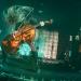 Apocalyptica u Tvornici – metalna klasika