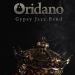 Oridano Gypsy Jazz Band objavio singl 'Swing King'