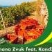 Banana Zvuk feat. Kandžija 'OPG' – pronađeno rješenje za krizu i recesiju