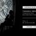 Transhistria Deconstructed vol. 2 live stream dueta Tamare Obrovac i Žige Goloba