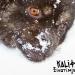 Kali Fat Dub 'Životinjska karma' – ljetna razglednica iz apokalipse