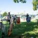 Najavljeni festivali na Martinskoj: Šibenik postao endemska festivalska lokacija u Europi