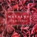 Mayales najavio novi album 'Domovina'